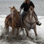 Point Reyes in ocean